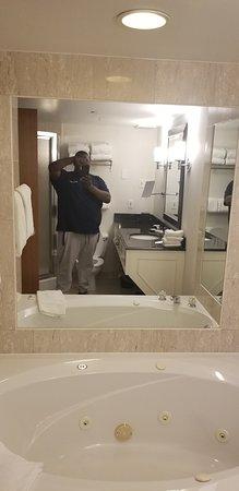 Sheraton on the Falls Hotel: Mirror