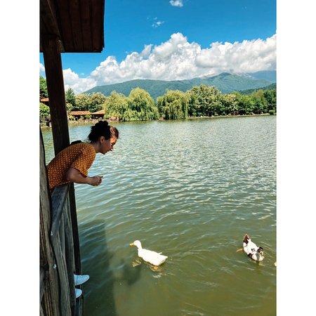 Lopota lake it's a Heaven !