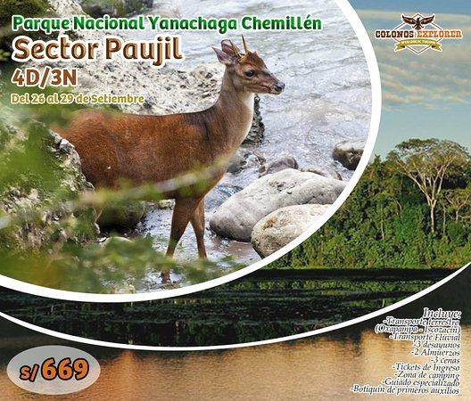 Yanachaga Chemillen National Park, Peru: Visita con nosotros uno de los sectores más interesantes del Parque Nacional Yanachaga Chemillén los días 26, 27, 28 y 29 de setiembre.