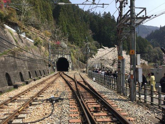 天龍村, 長野県, 飯田線のトンネル