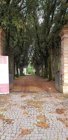 Sipicciano, Włochy: Villa Lais: il viale d'ingresso