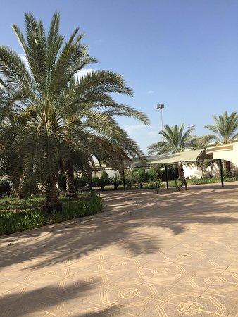 Καλύτερα site dating Κουβέιτ