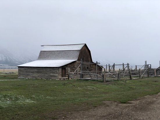Half Day Grand Teton Wildlife Safari Tour: Cabin that has been famously photographed thousands of times