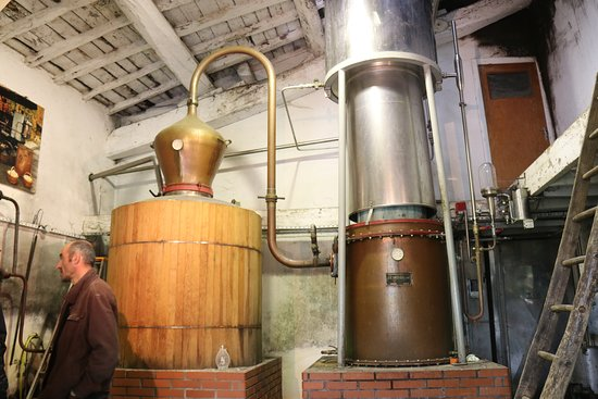 Villette-de-Vienne, ฝรั่งเศส: Pour la distillation.