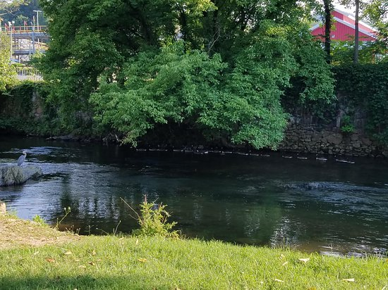 CAMP RIVERSLANDING - Updated 2019 Campground Reviews (Pigeon Forge