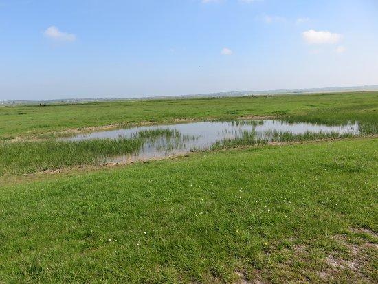 Sheerness, UK: typical landscape