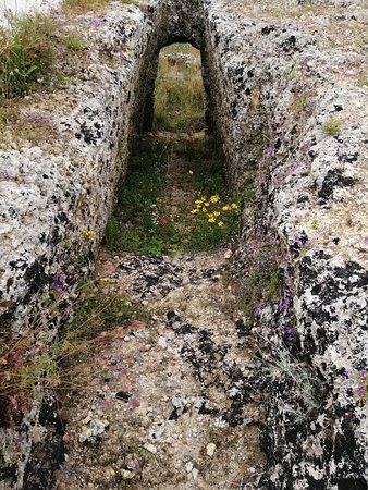 Mazarakata Mycenaean Cemetery صورة