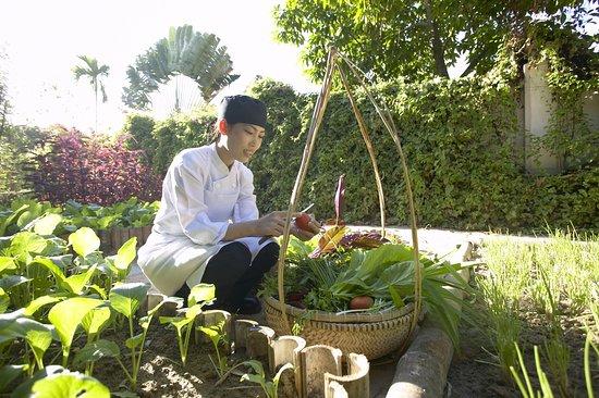 Evason Ana Mandara Nha Trang: Restaurant
