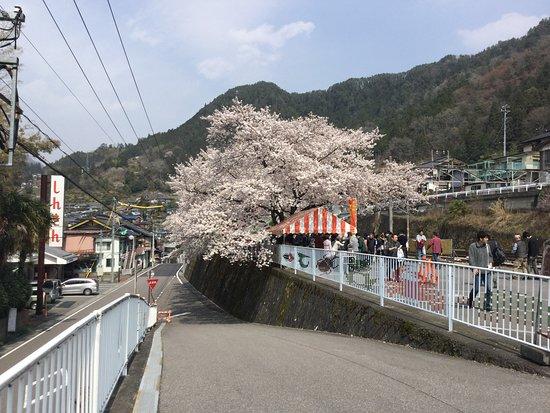 天龍村, 長野県, 隣の広場でのバザー