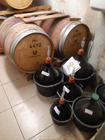 Beit Shemesh, Israel: Rogalit Winery - in the celler