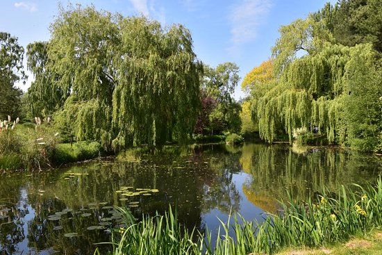 Gooderstone Water Gardens & Nature Trails