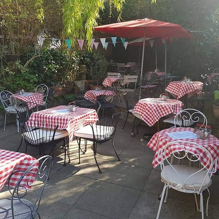 Cafe 21 : The garden looks lovely today!