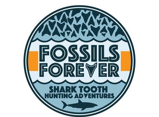 Fossils Forever - Shark Tooth Hunting Adventures