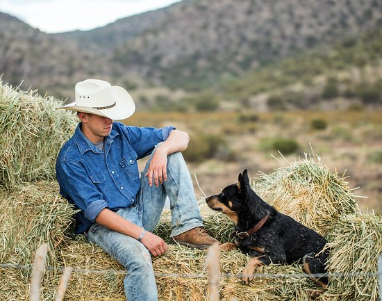 Horsin' Around Adventures: Around the ranch.