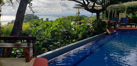 Infinity pool at TuleCafe, overlooking the Pacific