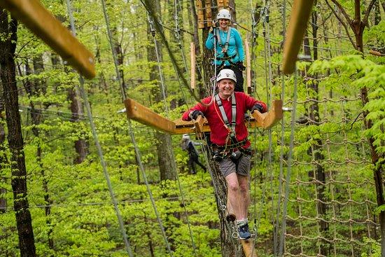Treetop Trekking Hamilton