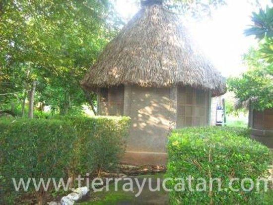Maxcanu, เม็กซิโก: Oxkintok & Calcehtok Tours Serenity Of Maya Purification & Sauna, Merida Yucatan Tours