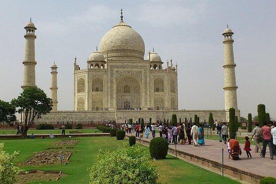 Privat Agra och Jaipur Tour från Delhi ...