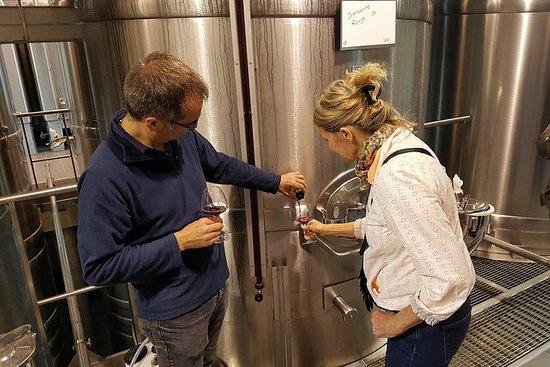 Dégustation de vins et fromages à...
