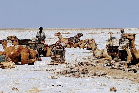 Explore o norte histórico da Etiópia...