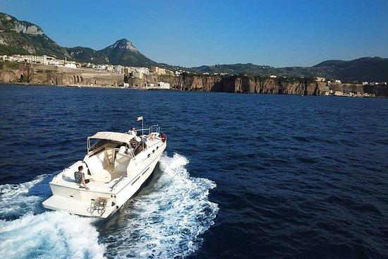 Capri fuld dagstur