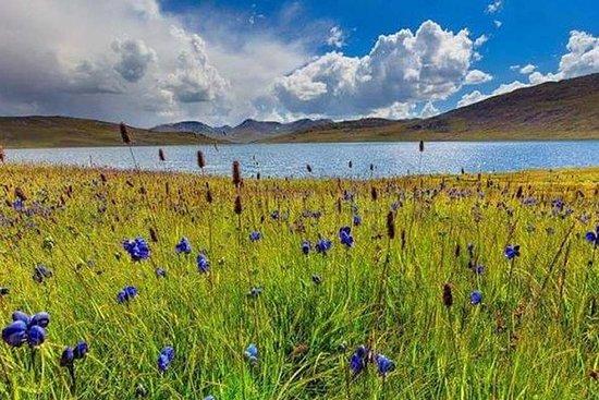 07 dagar - Tour Deosai National Park ...