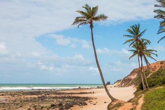 Pipa Beach Tour - Avreise fra Natal