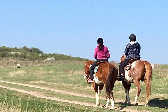 Guided horse trekking rides 1/2/3...