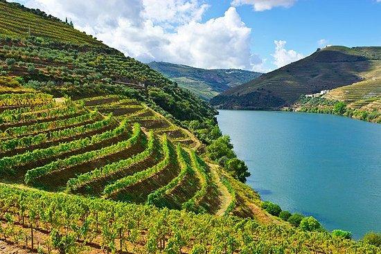 Privat Douro vin tur