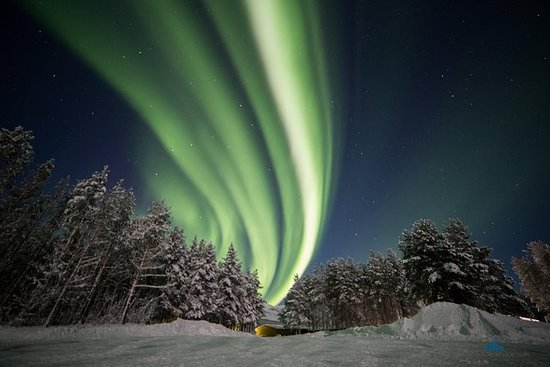 Northern Lights Chase