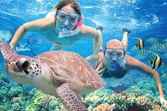 Kauai's Ultimate Guided Shore...