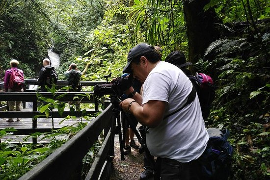 Monteverde Cloud Forest Reserve...