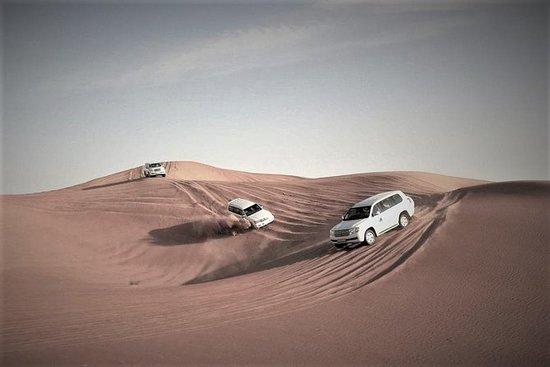 Budget safari dans le désert