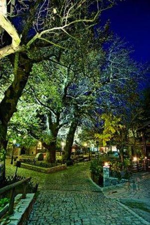 Ano Agoriani, اليونان: πλατεία Επταλόφου