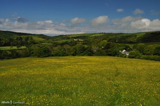 Kilkhampton, UK: View from the path to Penstowe Castle