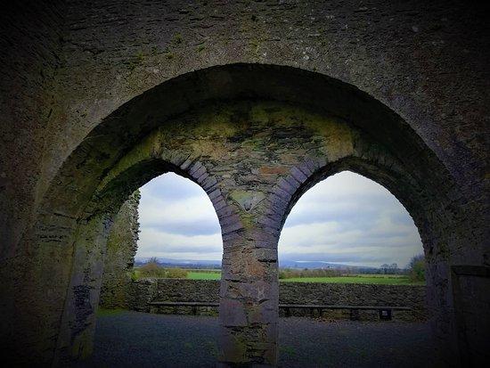 Aghaboe Abbey, Laois.