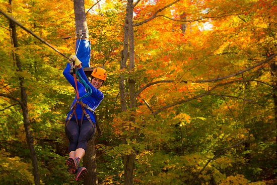 Chelsea, Canada: Camp Fortune Aerial Park and Ziplines