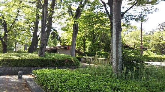 Oshironishi Park