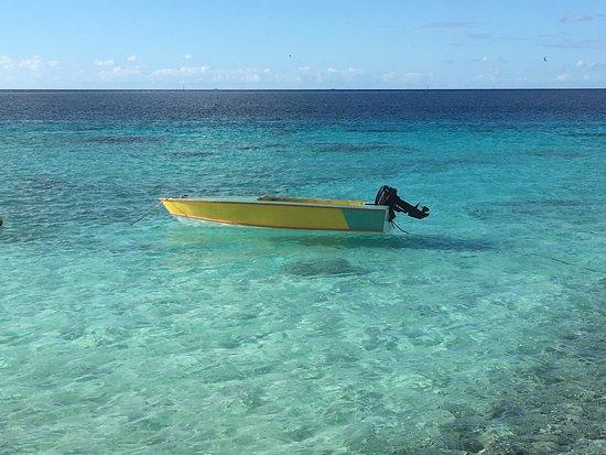 Makemo, Frans-Polynesië: Un magnifique atoll, la partie «visitable» se limite essentiellement au Village et la portion entre le village et l'aérodrome. N'hésitez à demander au pêcheurs de vous emmener pour une belle journée de pêche.