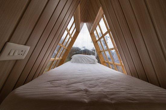 SnowPod 的照片 - Chopta照片 - Tripadvisor