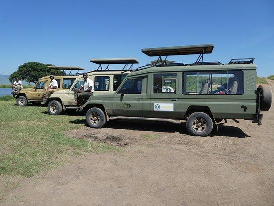Taswira Africa Safaris