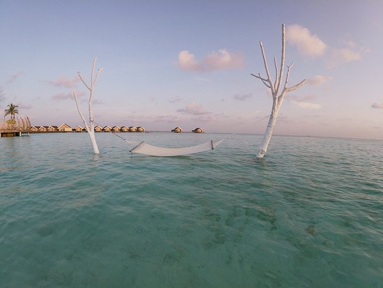 Lux Ari Atoll Is The Best Paradise