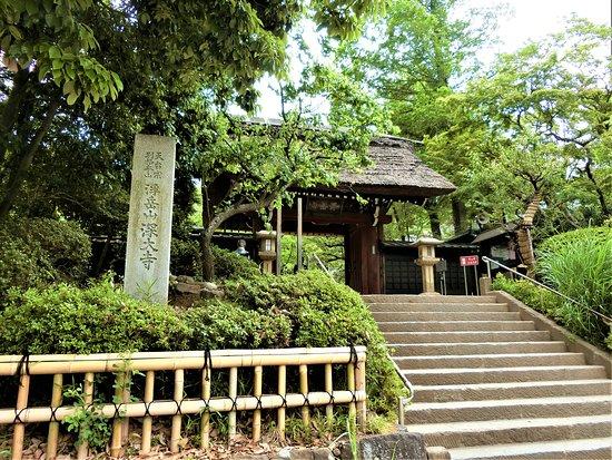 Jindai-ji Temple Sammon Gate