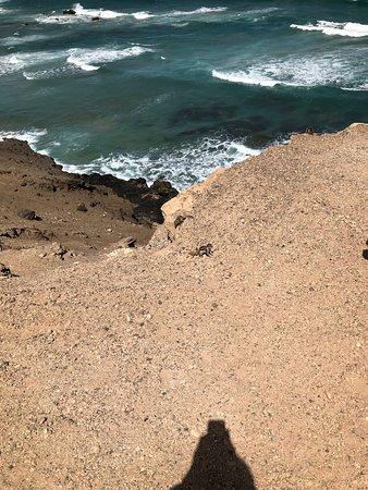 Quad And Buggy Safari In Costa Calma From Jandia Or Esquinso: QUAD UND BUGGY SAFARI IN COSTA CALMA VON JANDIA ODER ESQUINSO