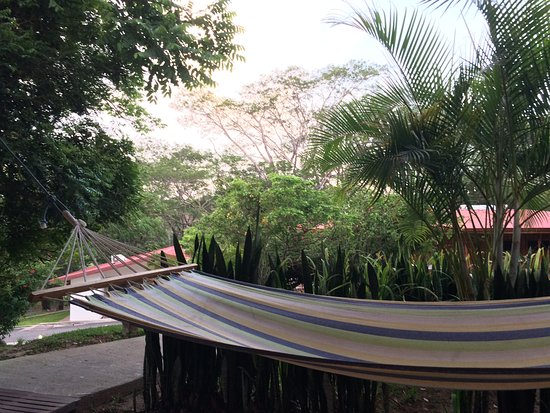 Four nights in Rincon