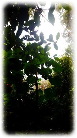 Costa Rica: Very beautiful