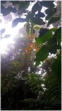 Costa Rica: Very beaautiful