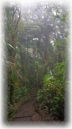 Costa Rica: Stunning.