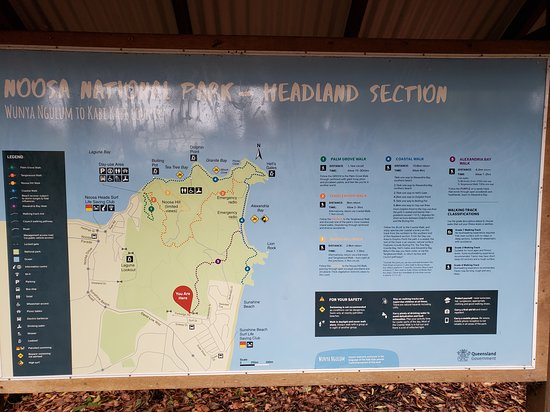 Noosa National Park: Where we began.