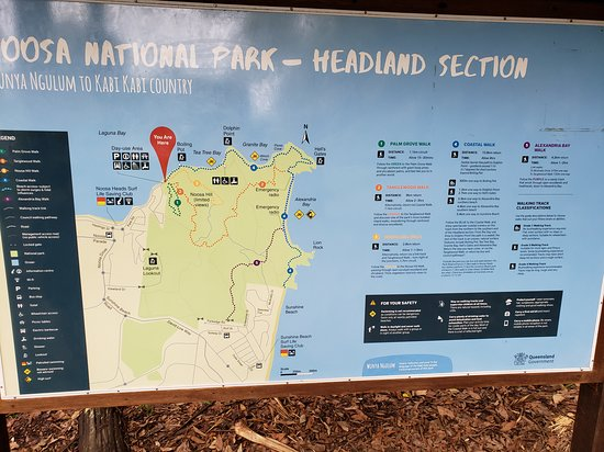 Noosa National Park: Leaving the park to find a beer on Hastings St!
